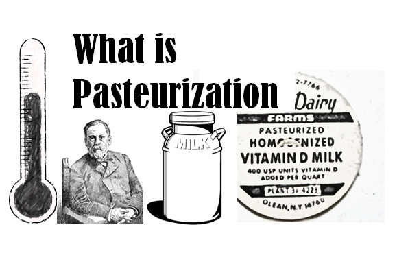 what is pasteurization dairy moos