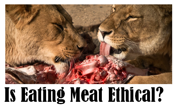 is it ethical to eat meat essay